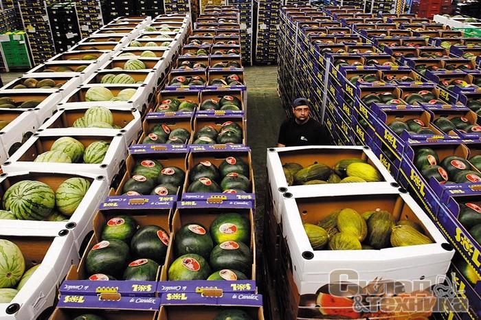 Картинки по запросу важность хранения плодоовощной продукции